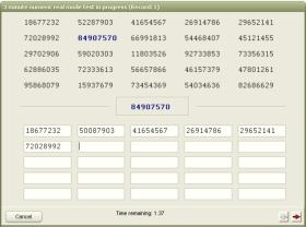 Data Entry Test Screen Shot 2